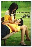 Love & Romance (256)