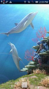 Dolphin CoralReef Trial