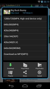Download Video Mp4 - Downloader