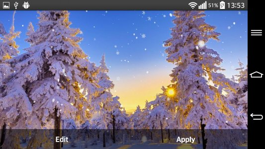 Winter Forest Live Wallpaper