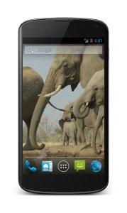 Elephant Free Video Wallpaper