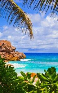 Paradise Island Live Wallpaper