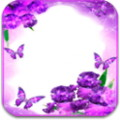 Flower Love Photo Frames - Decorate your pictures with beautiful flowered frames
