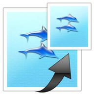 images easy resizer&JPG ⇔ PNG