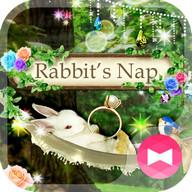 Cute Theme Rabbit's Nap