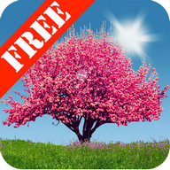 Spring Trees Free