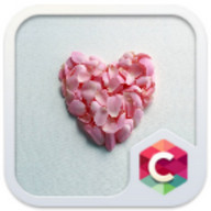 Pink Petals Heart Love Theme