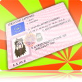 Fake Driver License Generator