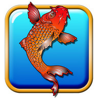 Koi Fish Live Wallpaper
