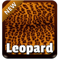 Leopard Keyboard - Leopard skin for your keyboard, can you imagine?