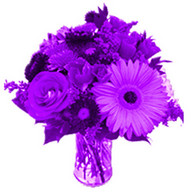 Purple Flowers Live Wallpaper