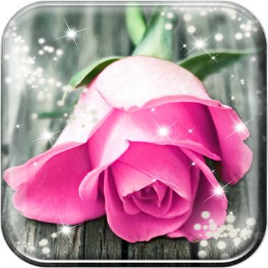 Pink Rose Live Wallpaper HD PrevNext