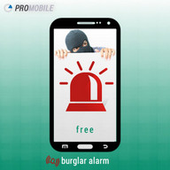 Security Camera Alarm System