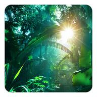 Animgif Live Wallpaper 2 Pro Android App Apk Comdirexar
