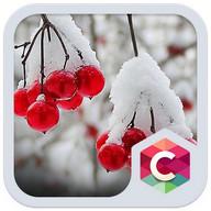 Snowy Cherry C launcher Theme