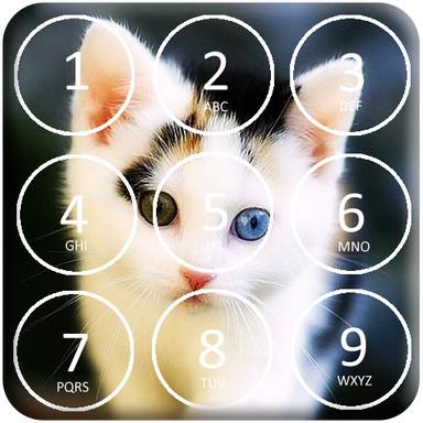 Kitty Cat Pin Lock Screen