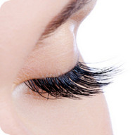 The Lashes Clinic