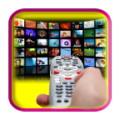 Universal Remote Control TV Pro