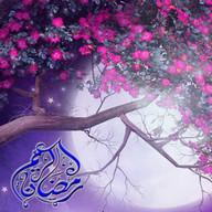 beauty ramadan LiveWallpaper