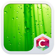 Green Leaf C Launcher Theme