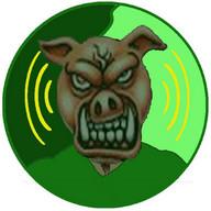 Palmeiras MP3 Player