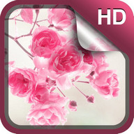 Pink Flowers Live Wallpaper HD