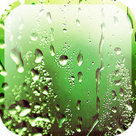 Rain Appling Live Wallpaper