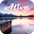 Sky Alive Video Wallpaper
