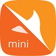 Yolo Browser Mini - Safer