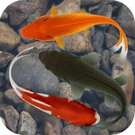 Beautiful Fish Screensaver Fre