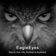 EagleEyes(Lite+)