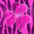 GO Launcher Theme Pink Zebra