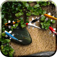 Koi Free Live Wallpaper - A lovely animated wallpaper with koi fish in a pond