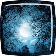 Bulan Kertas Dinding Langsung