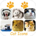 Scleen Cat Icon Changer