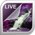Splashing Waterfalls Live Wallpaper