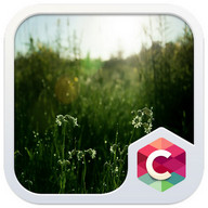 CLOUDY NATURE C LAUNCHER THEME