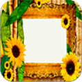 Flowers Season Photo Frames