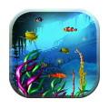 Galaxy S5 Fish Tank Wallpaper