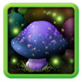 Magic Mushrooms Free Live Wallpaper