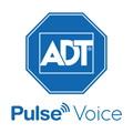 Pulse Voice