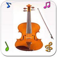 Real Violin
