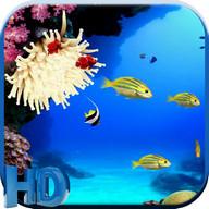 The Aquarium live wallpaper