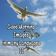 Good Morning Images in many languages