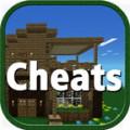 Mine-cr P-E Cheats