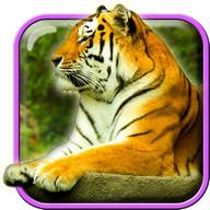 Tigers Live Wallpaper