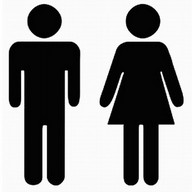 Boy or Girl. Check Gender