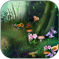 Fireflies in the fairy forest