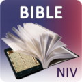 NIV Bible for Study Free