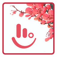 Plum Blossom Keyboard Theme